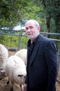 david likes sheep